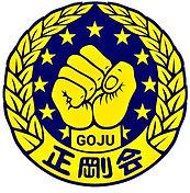 goju-ryu-karate-portugal.jpg