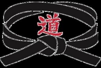 Internacional | World Elite Black Belt Society - WEBBS