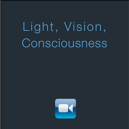 Light, Vision, Consciousness