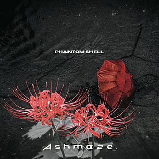 phamtom shell art.png