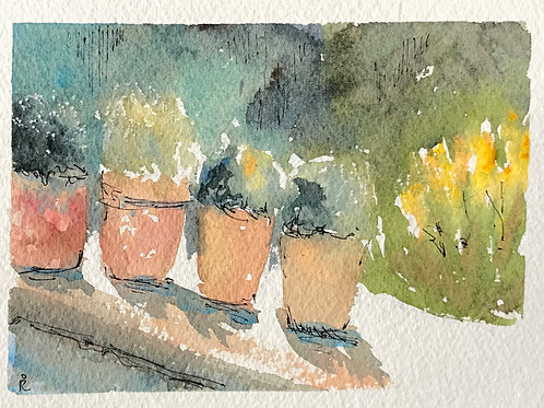 30 in 30 - day 21 - Sorolla's flower pots