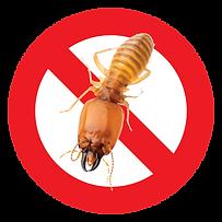 Logo termite