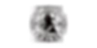 Fleischerei Raabe Logo.png