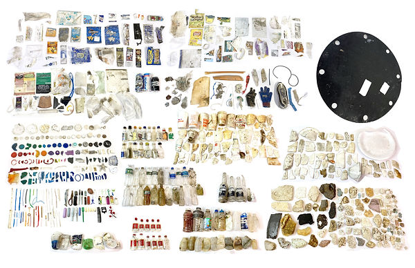 future fossil collection 2.0(compressed)