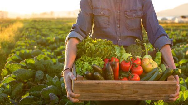 המארז החקלאי כולל