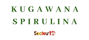 spirulina support.png