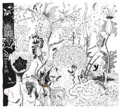 2010.metamorfose.JPG