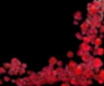 Cici.B Rose Petals.png