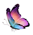 Butterfly_Natural.png