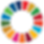 SDG Wheel_Transparent2.png