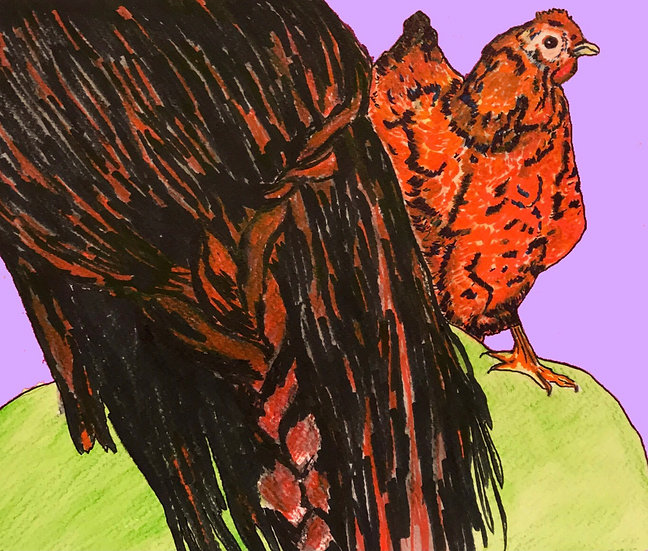The Woman With The Hen