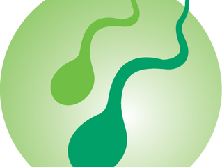 INOMAN® TO BOOST SPERM QUANTITY AND QUALITY - COMING MARCH 2017