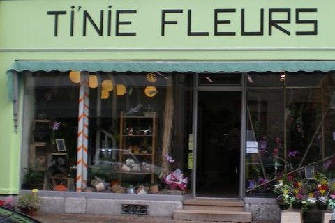 tinie-fleurs__pvu3rl.jpg