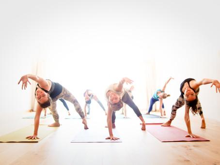 Lumière sur le Yoga Vinyasa