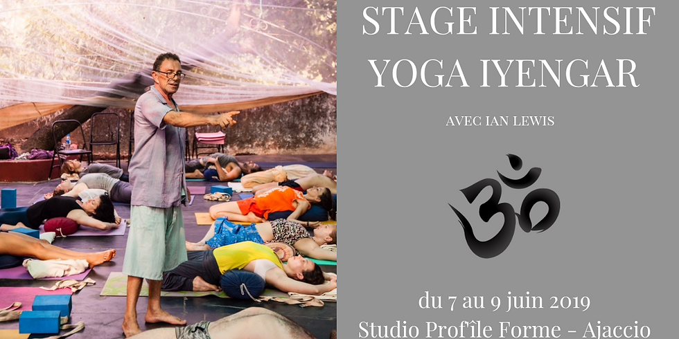 Stage Intensif de Yoga Iyengar avec Ian Lewis