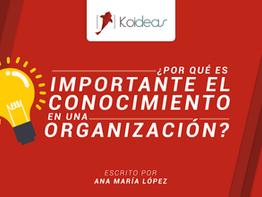 ¿Por qué es importante el conocimiento en una organización?