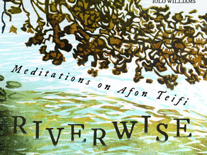 Riverwise Meditations on the Teifi by Jack Smylie Wild