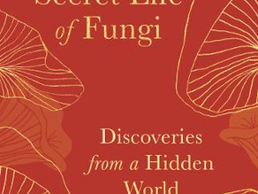 The Secret Life of Fungi: Discoveries from a Hidden World by Aliya Whiteley