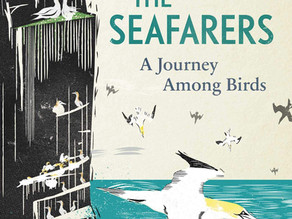 The Seafarers by Stephen Rutt