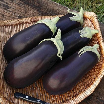 'Galine' Eggplant