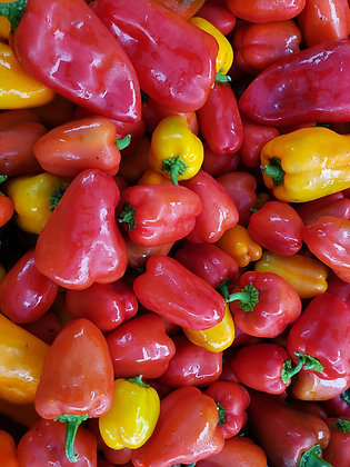 'Red Lunchbox' Sweet Pepper