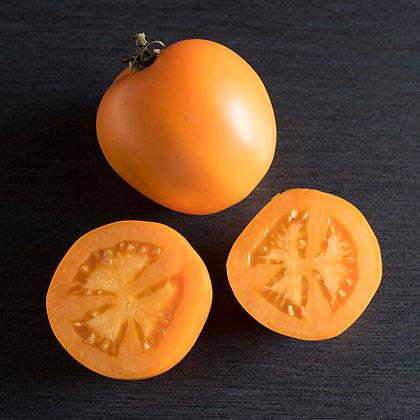 'Valencia' Heirloom Tomato