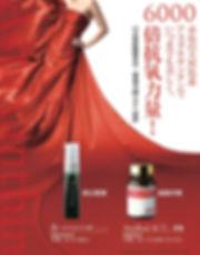 astareal act2 poster jap.jpg