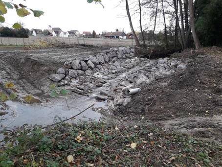 Création d'une zone humide à Sierentz