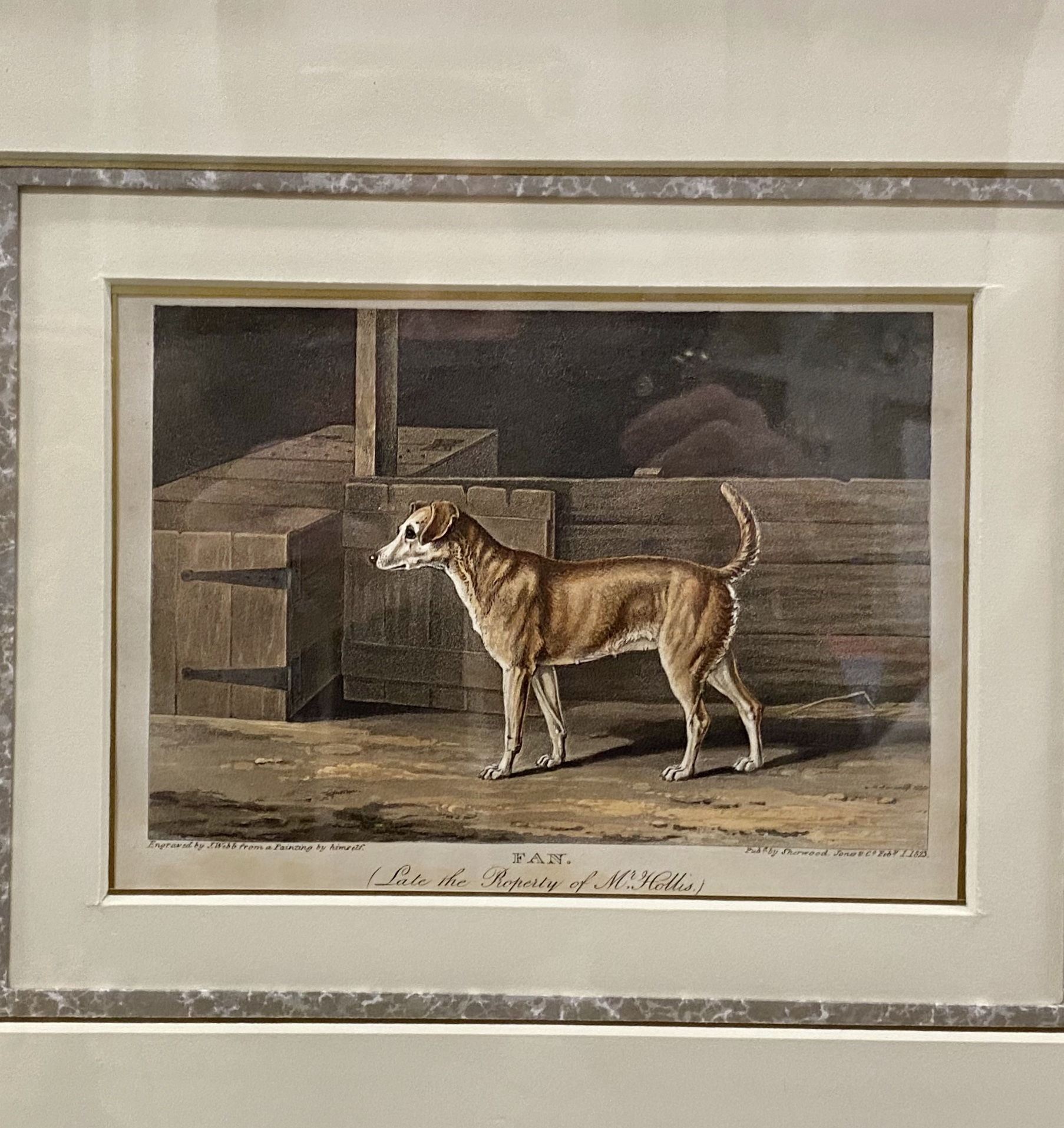 Vintage Framed Dog Engravings