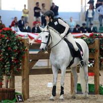 Teilnahme WAWE Working Equitation WM Wien 2014 (19. Platz/28 Teilnehmer)