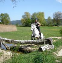 Freies Training Frauenfeld 2007