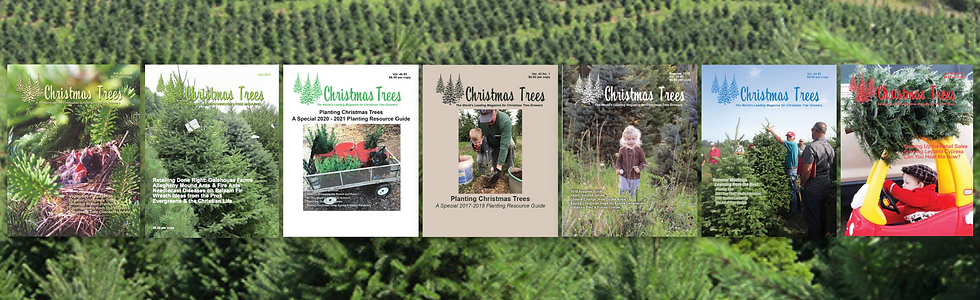 Christmas Trees Magazine.png