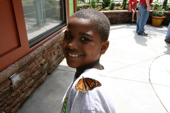butterflyboy.jpg