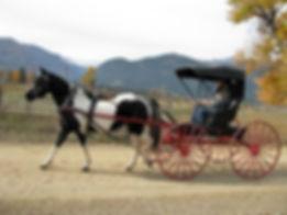right carrige.jpg