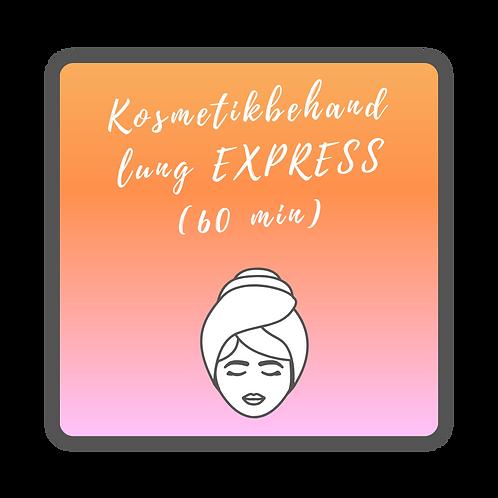 Kosmetikbehandlung EXPRESS (60 min)