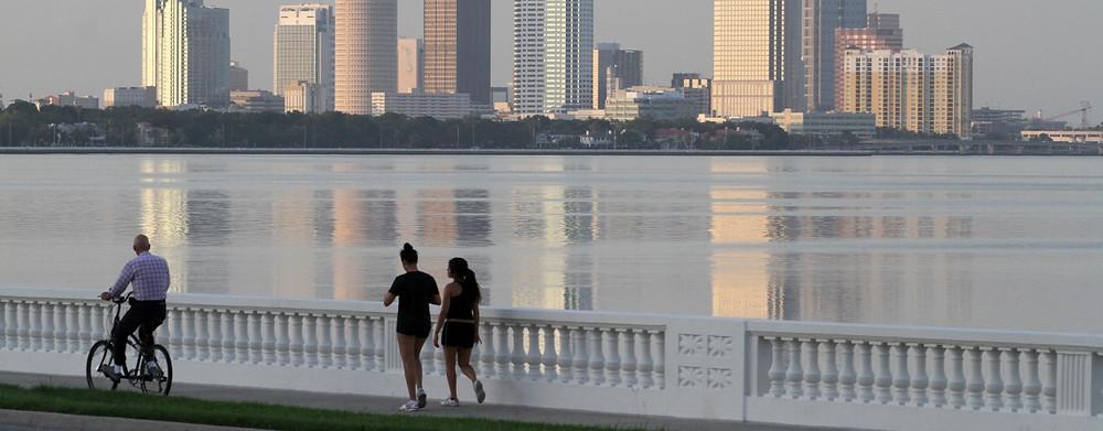 Bayshore Boulevard - Tampa Bay