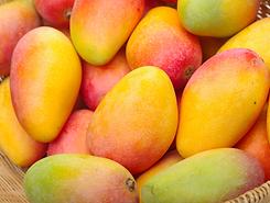 mangos senor frut santiago chile 02.png