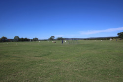 Fort Beaufort the Field