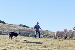 JKloof Pippa and Fleece