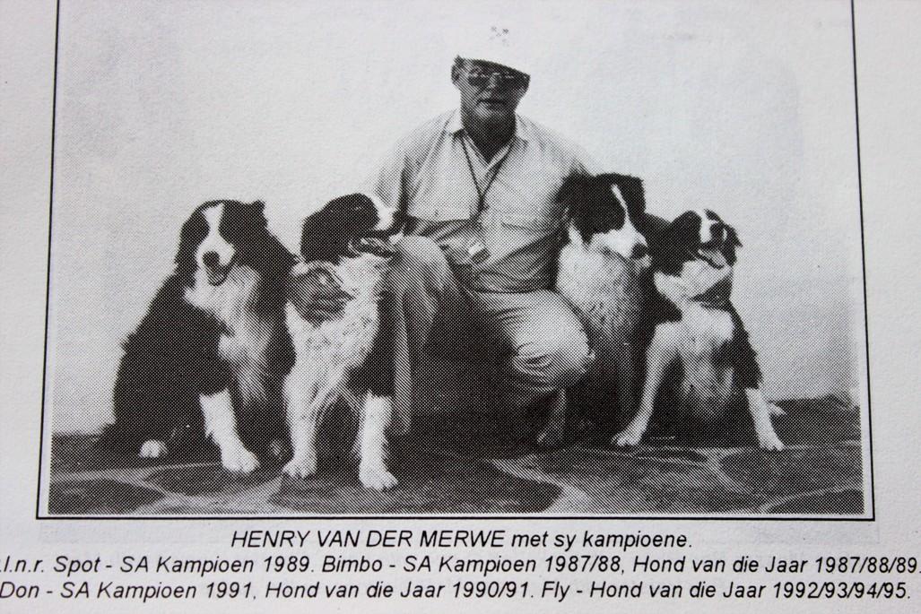 Four Champions - Spot, Bimbo, Don & Fly - Henry van der Merwe