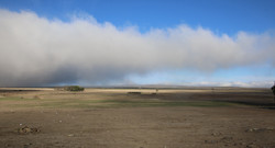 Sutherland Mist2