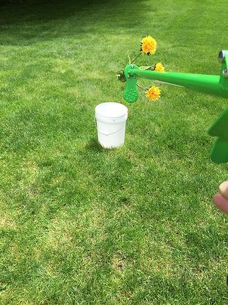 weeding-tool-promo