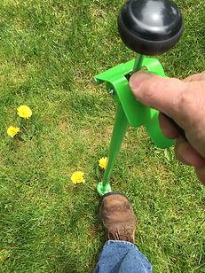 weeding-tool-step
