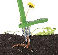 weed zinger below soil