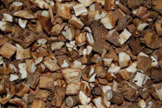 roasted dandelion root
