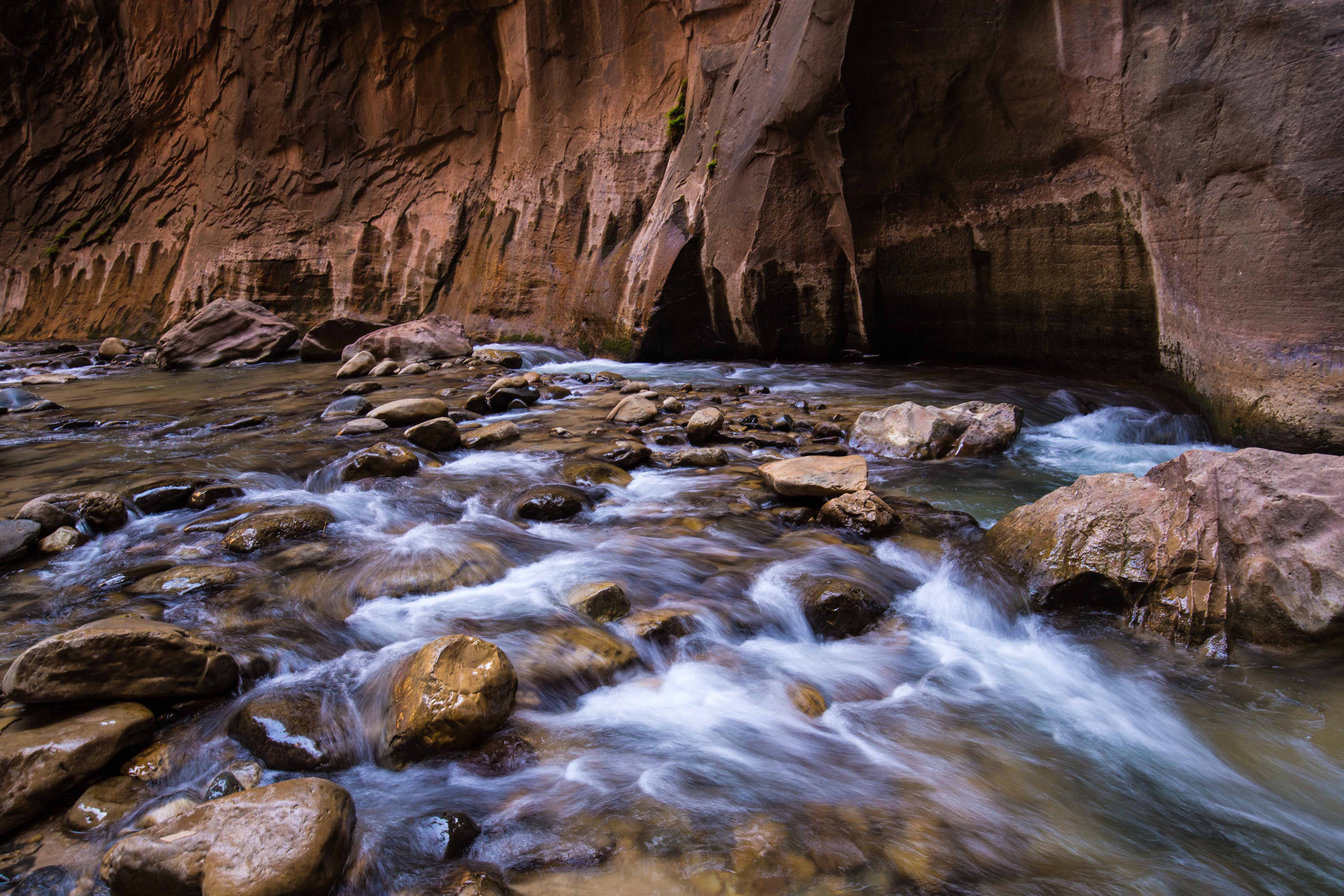 The Narrows - Zion National Park
