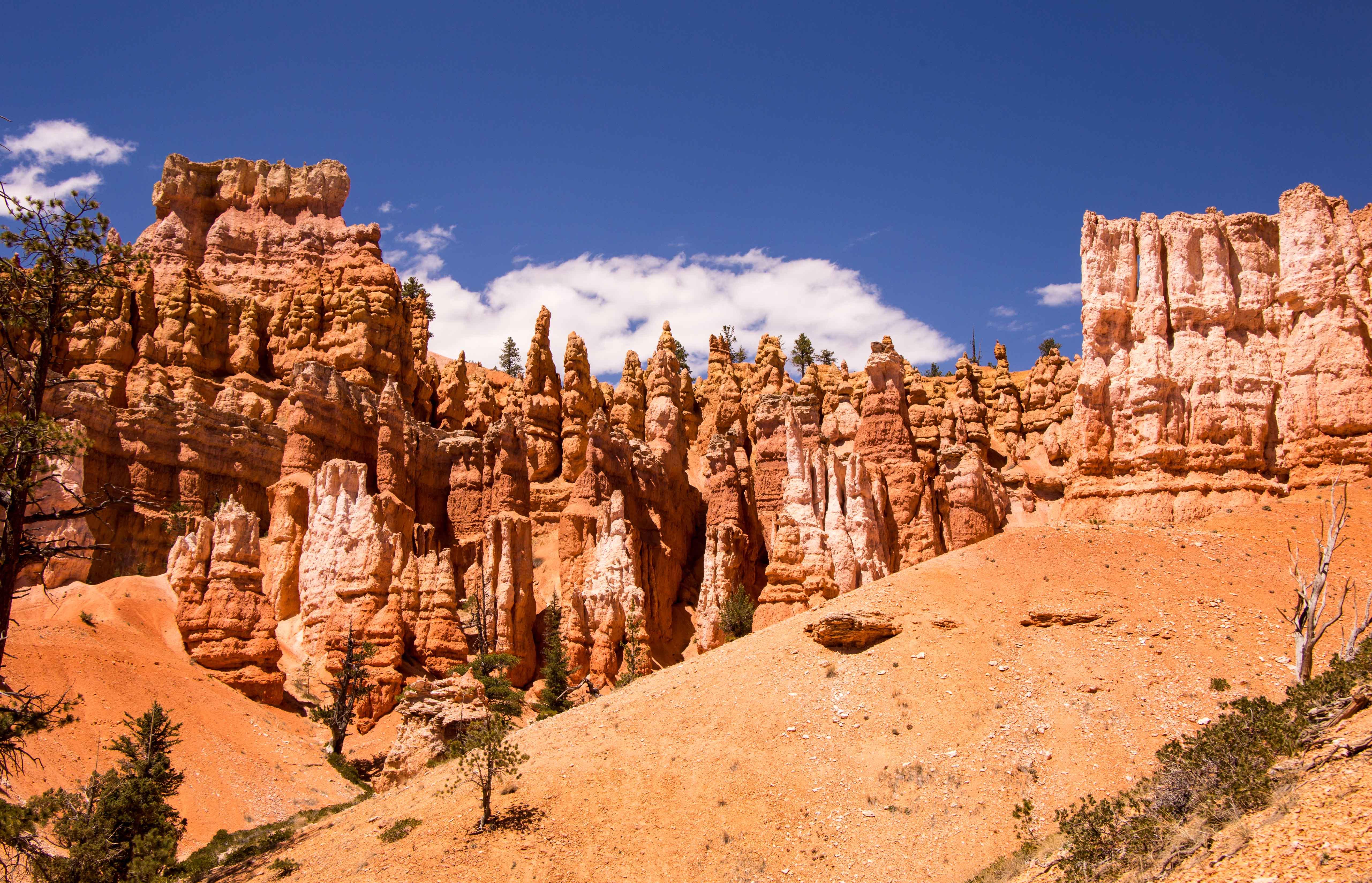 Hoodoos - Bryce Canyon National Park