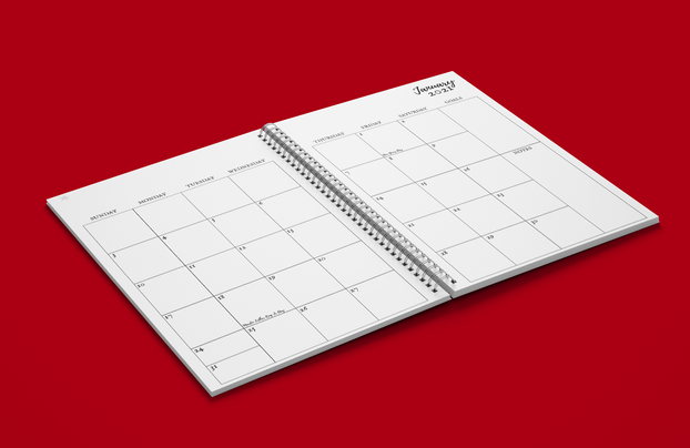 Monthly Spread 2021 Calendar Year Planner