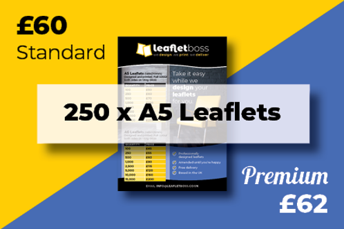 250 A5 Leaflets Designed and Printed
