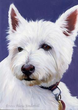 Van, West Highland Terrier